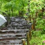 九州の梅雨入り・梅雨明けの時期予想!2017年はいつ?
