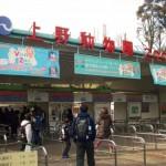 上野動物園の混雑状況やランチスポットは?